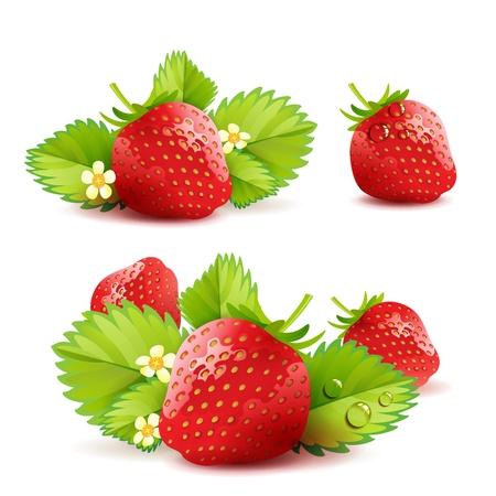 Illustration pour Strawberry with leafs - image libre de droit