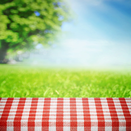 Photo pour Picnic in nature - image libre de droit