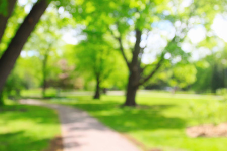 Photo for Summer growing sunny park with unrecognizable people, blurred background - Royalty Free Image