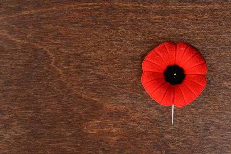 Photo pour top view remembrance day poppy - image libre de droit