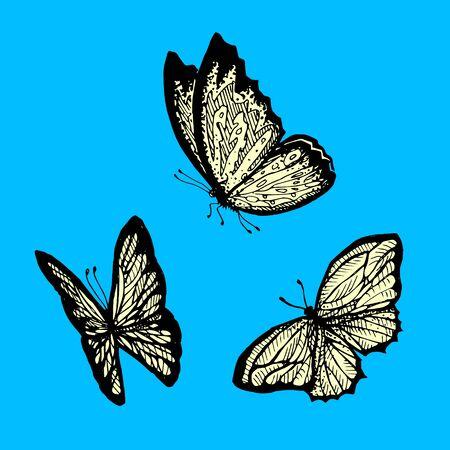 Ilustración de Flying butterfly on a blue background. - Imagen libre de derechos