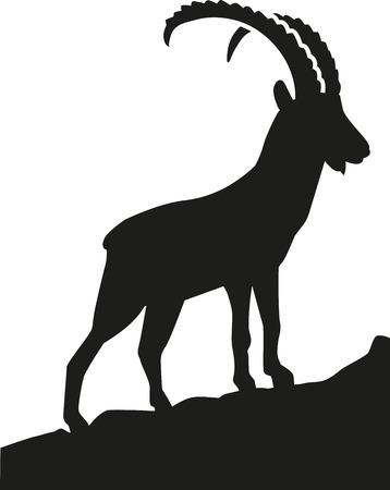 Illustration pour Ibex in the mountains - image libre de droit