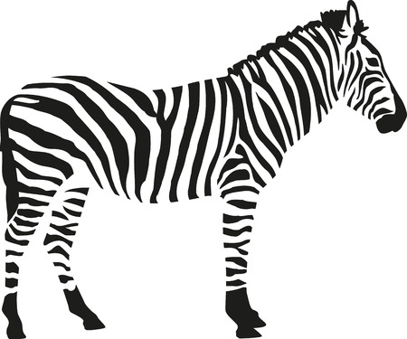 Illustration pour Zebra silhouette isloated on white background - image libre de droit