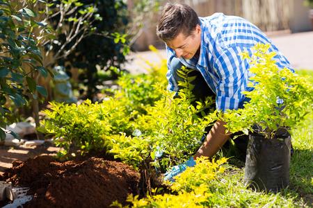 Foto de young man transplanting a new plant in his garden - Imagen libre de derechos