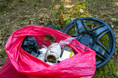 Foto per Collecting or picking up trash, garbage and plastic for cleaning in a forest, pollution - Immagine Royalty Free