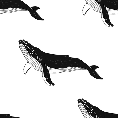 Illustration for Vector seamless pattern with hand drawn illustration whale. Black contour art-work isolated on white background. - Royalty Free Image