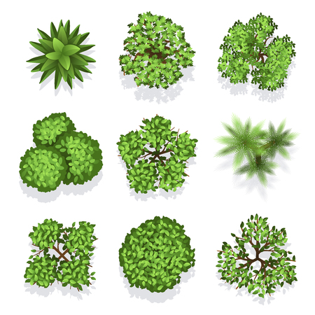 Ilustración de Top view different plants and trees. Vector set of trees for architectural or landscape design. Illustration green trees for garden - Imagen libre de derechos