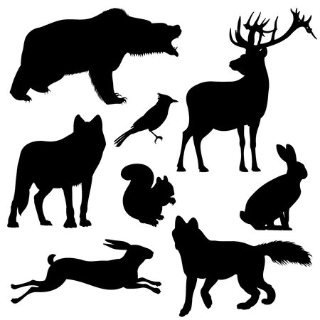 Forest animals vector silhouettes set. Predator animal mammal, illustration of black silhouette animal