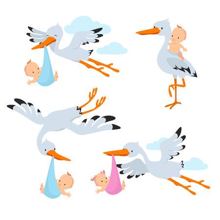 Ilustración de Cartoon flying storks and stork birds carrying baby vector set - Imagen libre de derechos