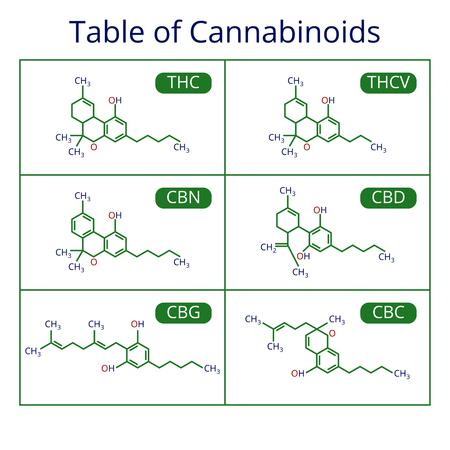 Illustration pour Cannabis skeletal formula. Marijuana molecules vector set - image libre de droit