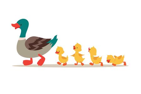Ilustración de Mother duck and ducklings. Cute baby ducks walking in row. Cartoon vector illustration. Duck mother animal and family duckling - Imagen libre de derechos