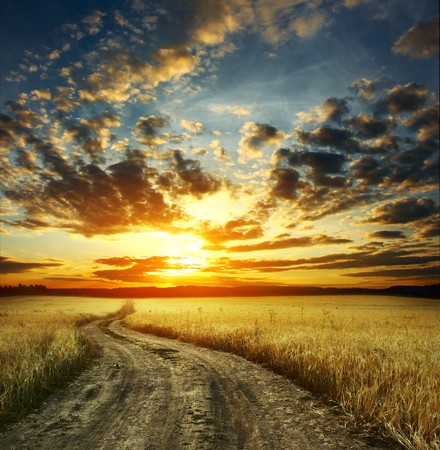 Photo pour Road in field and cloudy sunset - image libre de droit