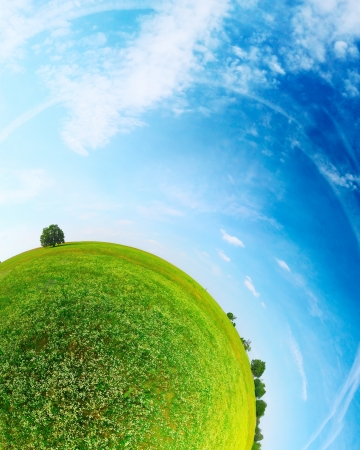 Foto de Part of a spherical panorama of a green meadow with trees and blue sky - Imagen libre de derechos