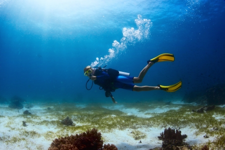 Photo for Scuba diver exploring tropical dive site and finning over bottom - Royalty Free Image