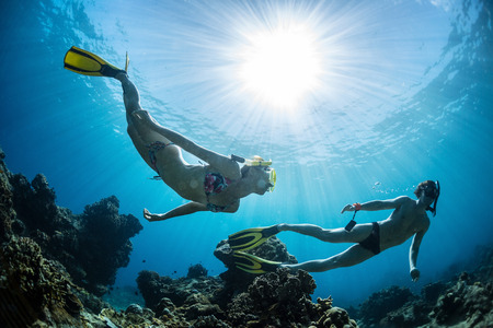 Photo for Underwater shot of the couple moving on depth over coral reef - Royalty Free Image