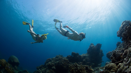 Photo for Underwater shot of the couple gliding in depth of tropical sea at sunny day - Royalty Free Image