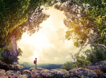 Photo for Hiker with backpack standing on the rock surrounded by lush tropical forest - Royalty Free Image