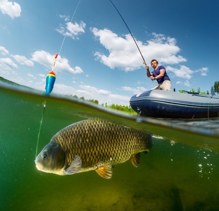 Photo pour Split shot of the fisherman with rod in the boat and underwater view of the big fish (Carp of the family of Cyprinidae) - image libre de droit