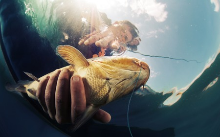 Photo for Underwater shot of the fisherman holding the fish - Royalty Free Image