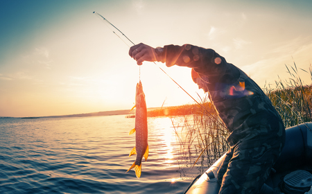 Photo pour Fisherman with fish on the boat at sunset - image libre de droit