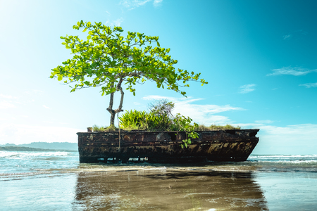 Photo pour Remains of a ship at the Caribbean Sea - image libre de droit