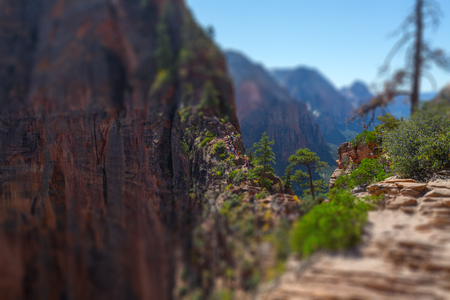 Foto de Tourists and visitors (barely visible in the center of frame) of the Zion National Park walk on the steep and dangerous trail named Angels Landing, USA. Tilt shift effect applied - Imagen libre de derechos