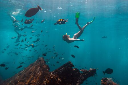 Foto de Young woman snorkeling and skin dives in the tropical sea over the shipwreck. USAT Liberty shipwreck in Bali, Indonesia - Imagen libre de derechos