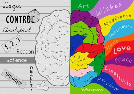 Foto de Brain creativity - Imagen libre de derechos