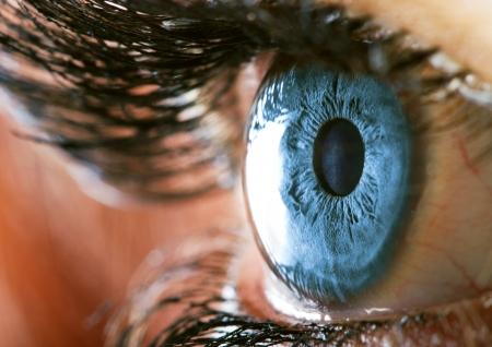 Foto de Human eye macro closeup view - Imagen libre de derechos