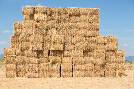 Photo pour Straw Bale Stack - image libre de droit