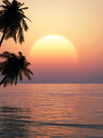 tropical sunset on a beach