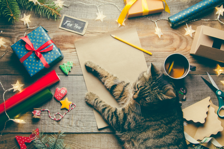 Foto de Beautiful Christmas background with a new year décor, a sheet of old paper, garland and gifts, cup of tea and cat lies on a wooden background. Merry Christmas postcard. - Imagen libre de derechos