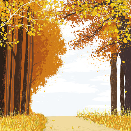Illustration pour Landscape with path between autumn trees in the forest - image libre de droit