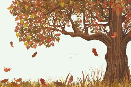 Illustration pour Autumn landscape with oak tree - image libre de droit
