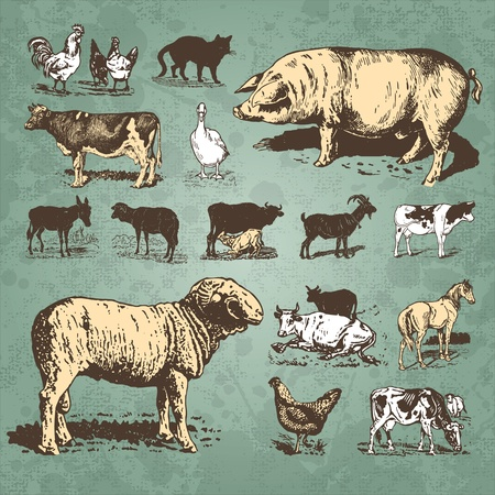 vintage farm animals set (vector) mural