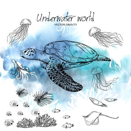 Illustration pour Vector illustration. Pen style vector sketch. Underwater world . Vector objects set. - image libre de droit