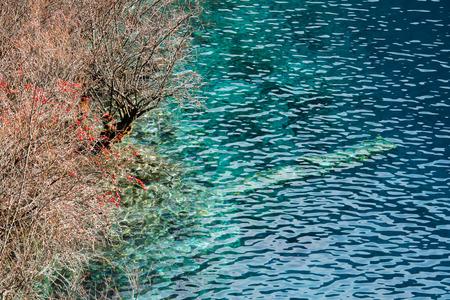 Photo for Jiuzhaigou scenery - Royalty Free Image