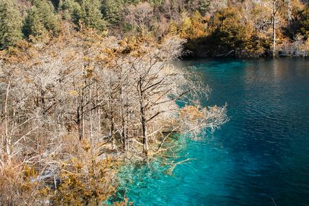 Photo for Jiuzhaigou nature scenery view - Royalty Free Image