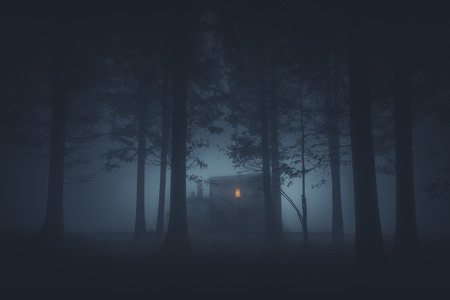 Photo for scary house in mysterious horror forest at night - Royalty Free Image