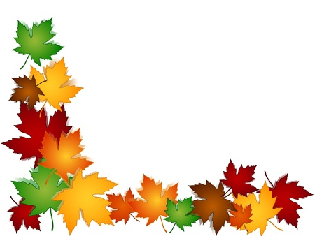 Maple leaves in a variety of autumn or fall colors with shadows forming a seasonal border, perfect for cards and the likes.