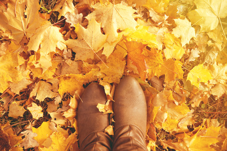 Foto per Fall, autumn, leaves, legs and shoes. Conceptual image of legs in boots on the autumn leaves. Feet shoes walking in nature - Immagine Royalty Free