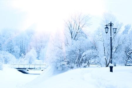 Photo pour Winter background, landscape. Winter trees in wonderland. Winter scene. Christmas, New Year background - image libre de droit