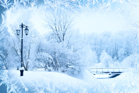 Photo for Winter background, landscape. Winter trees in wonderland. Winter scene. Christmas, New Year background - Royalty Free Image