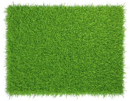 Foto de Green grass. natural background texture. fresh spring green grass. - Imagen libre de derechos