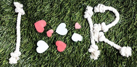 Photo pour I love R transcription made from ropes on grass background - image libre de droit