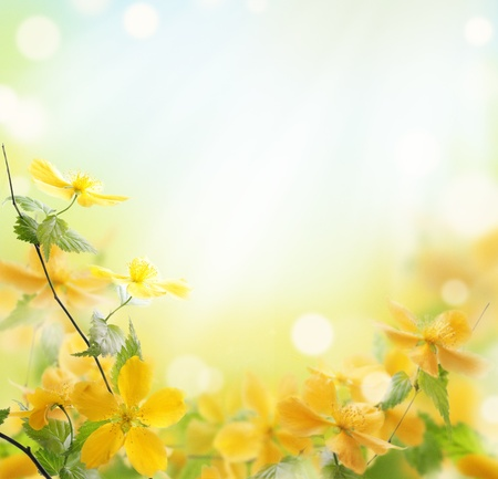Photo for Closeup of beautiful yellow flowers in the garden - Royalty Free Image