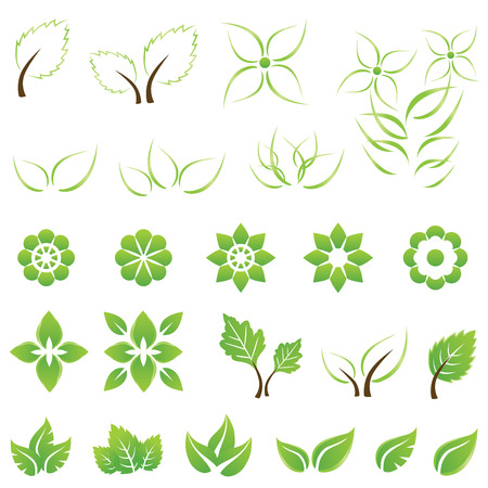 Illustration for Set of green leaf and flower design elements. This image is a vector illustration. - Royalty Free Image