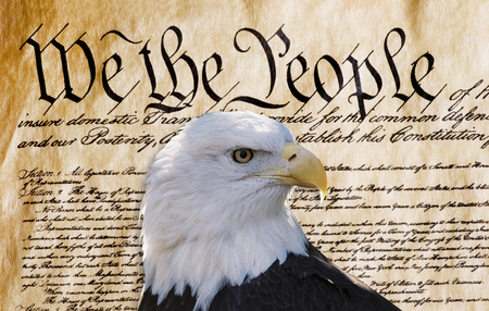 Photo for Constitution of America, We the People with American bald eagle. - Royalty Free Image