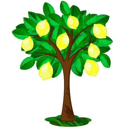 Ilustración de Icon of single lemon tree with ornate fruits - Imagen libre de derechos