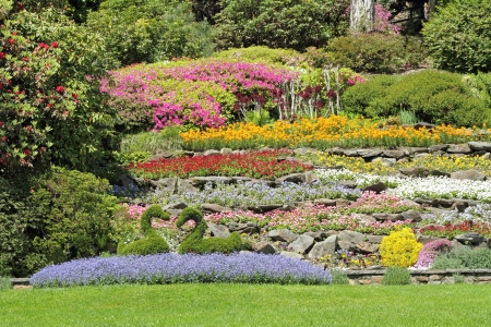 multicolor flower beds on hillside in spectacular Garden of Villa Carlotta in Tremezzo on lake Como, Lombardy, Italy, Europe